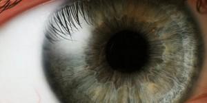 El iris reemplaza a las tarjetas de identificación en la Universidad de Carolina del Sur