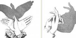 Posiciones para hacer sombras con las manos