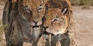 Animales extintos que podrían volver a la vida