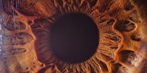 7 cosas que no sabías sobre los ojos y la vista